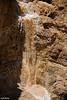 שיטפון בצאלים בירכת צפירה - Flash Flood in the Judean Desert