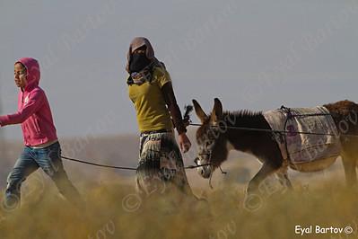 Bedouin girl in the Negev - נערה בדווית בנגב