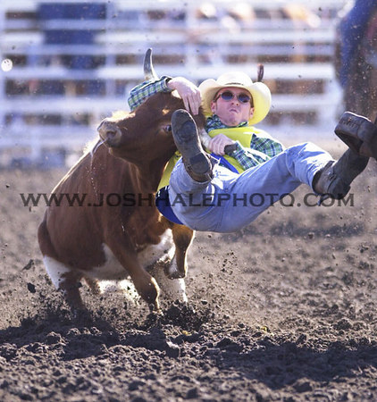 Josh Hale/Iowa State Daily<br /> Bryce Baker of South Dakota State University takes down a steer for a time of 6.2 seconds during the steer wrestling compitition at the 2000 Cyclone Stampede on Saturday afternoon at the ISU rodeo areana.  (10-14-00)
