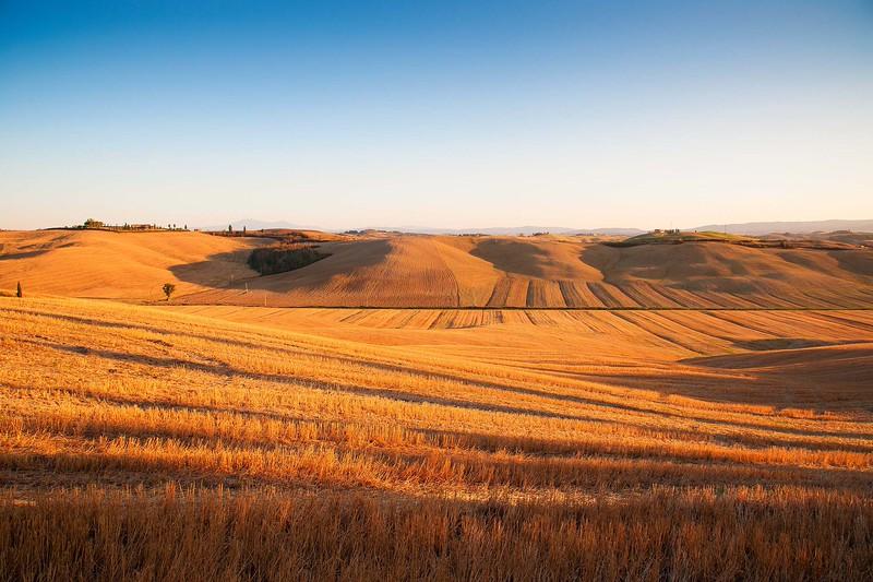 "©Emanuele Pagni Photography -Toscana  ""Paesaggio senese"""