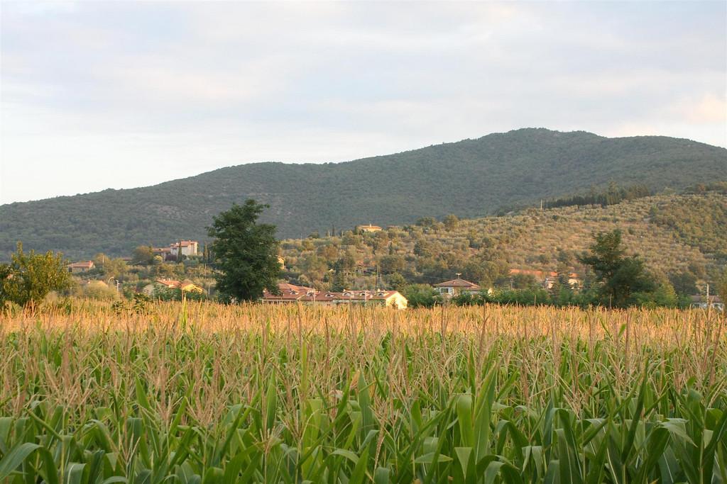 2010-09-06 Cortona (115)
