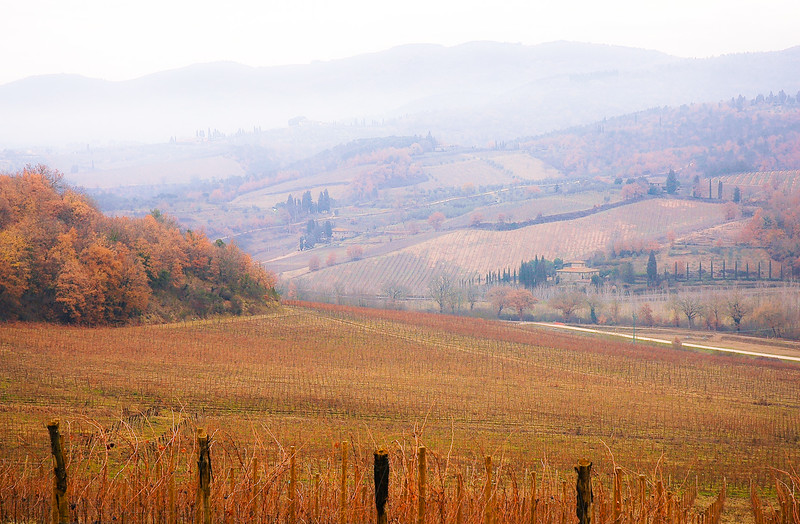 Tuscon Wine Country<br /> Tuscany