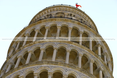 Torre Pendente di Pisa (Leaning Tower of Pisa), Piazza dei Miracoli (Square of Miracles), Pisa, Italy