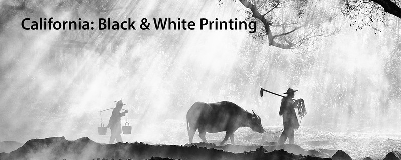 """<a href=""""https://www.incredibletravelphotos.com/Online-Classes/05-04-20-Black-and-White-Printing/"""">Click here to learn more...</a>"""