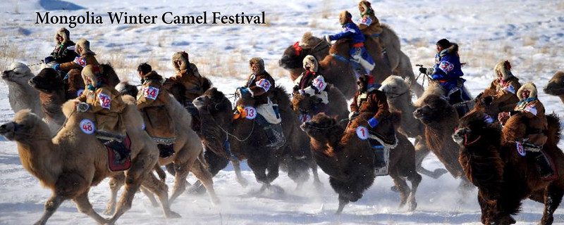 "<a href=""https://www.incredibletravelphotos.com/2022-Workshops/2022-Travel-Workshops/2022-Mongolia-Camels/"">Click here to learn more...</a>"
