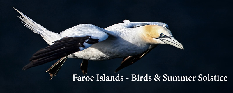 "<a href=""http://www.incredibletravelphotos.com/2018-Workshops/2018-Travel-Workshops/2018-Faroe-Islands/"">Click here to learn more...</a>"