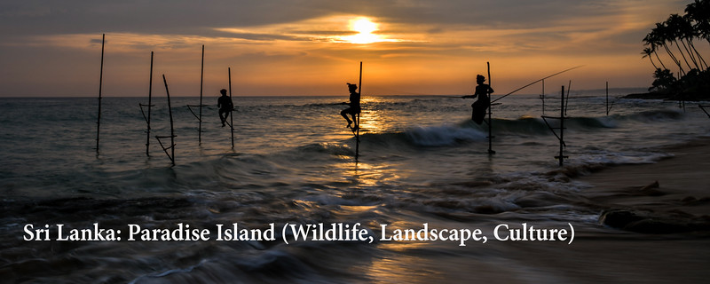 "<a href=""https://www.incredibletravelphotos.com/2019-Workshops/2019TravelWorkshops/2019-SriLankaCultureWildlife/"">Click here to learn more...</a>"