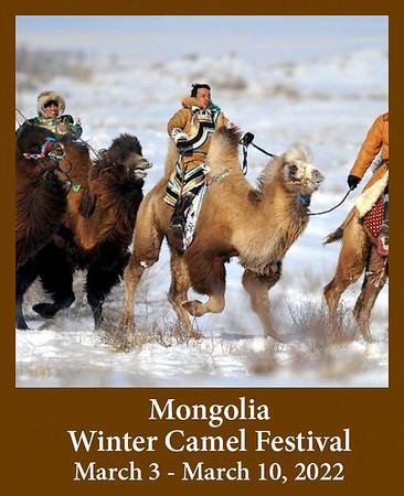 2021-03-03-MongoliaCamels