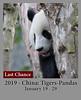 2018-02-05-China Tigersv2