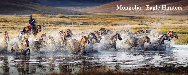 Mongolia - Eagle Hunters