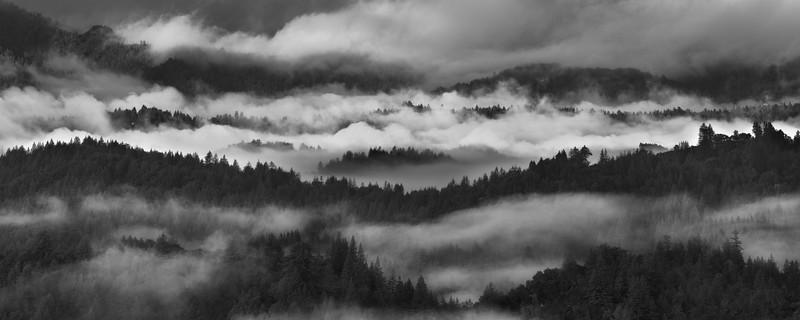 Landscape--003