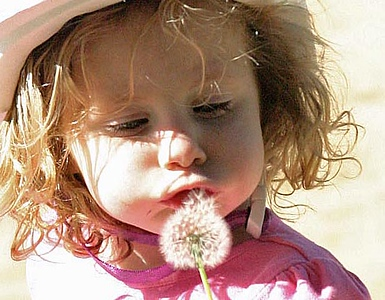 At The Park 12.27.05