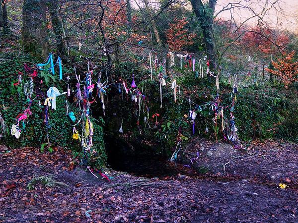 Wishing Tree Near Porthtowan - Cornwall