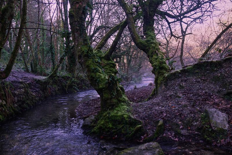 River near Mount Hawke - Cornwall
