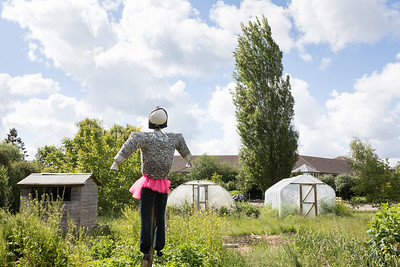 ITS-Oxford-City-Farm-2019 (006 of 164)