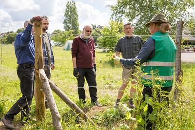 ITS-Oxford-City-Farm-2019 (023 of 164)