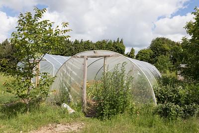 ITS-Oxford-City-Farm-2019 (001 of 164)