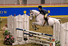 Royal Winter Horse Show.