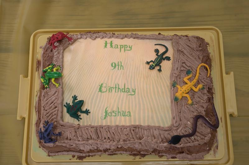 Joshua's 9th Birthday-226.jpg