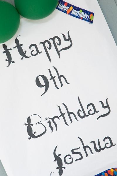 Joshua's 9th Birthday-227.jpg