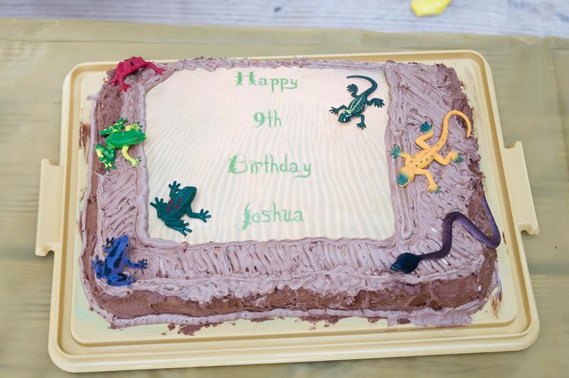 Joshua's 9th Birthday-223.jpg