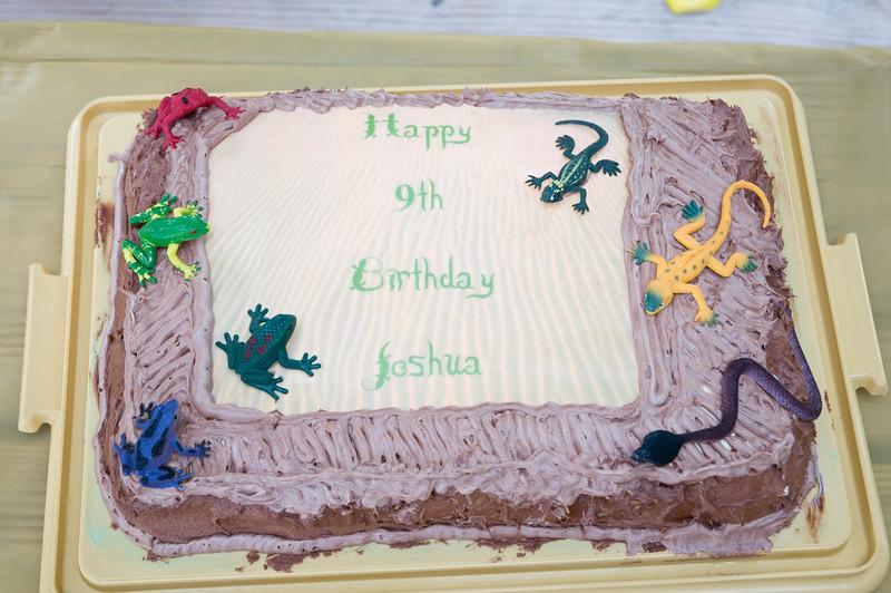 Joshua's 9th Birthday-224.jpg