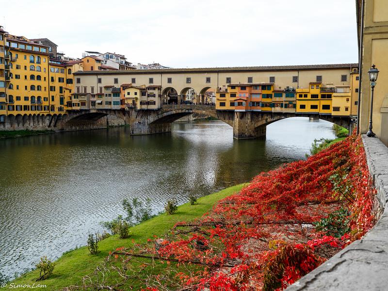Florence 18 11_6334