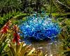 Blue Fiori Sun - Chihuly