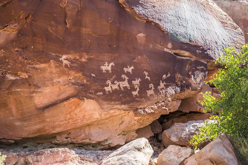 Petroglyph near Wolfe Ranch
