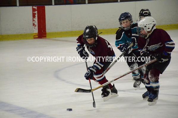 Ice Hawks Hockey