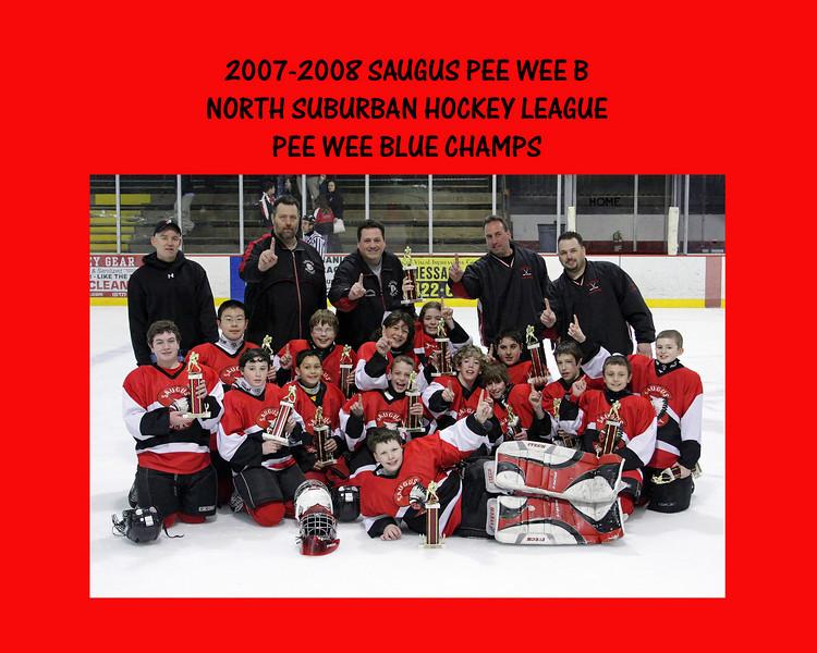 2007-2008 NSHL Champs