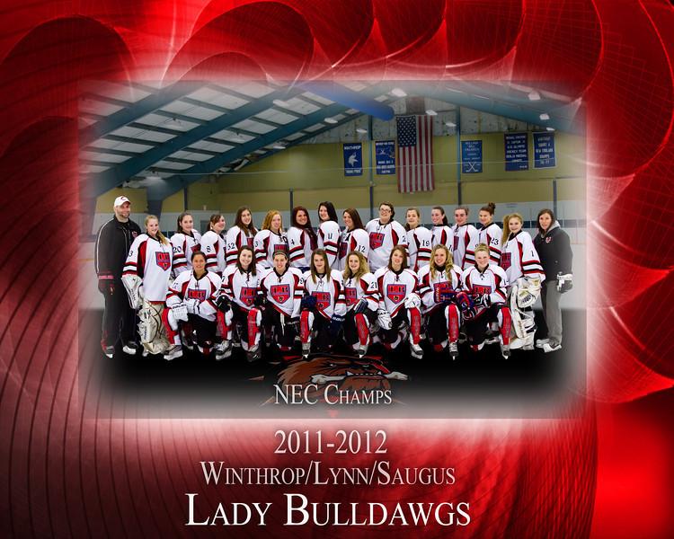 2011-2012 Dawgs Team