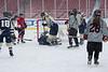 Frozen Fenway  01-02-14-338_nrps