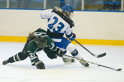 2013-2014 Nichols vs UMass-Boston