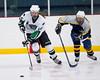 Shamrocks vs NH Avalanche 10-20-13-053_nrps