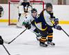 Shamrocks vs NH Avalanche 10-20-13-046_nrps