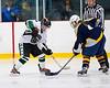 Shamrocks vs NH Avalanche 10-20-13-027_nrps