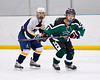 Shamrocks vs NH Avalanche 11-24-13-029_nrps