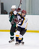 Shamrocks vs NH Avalanche 11-24-13-024_nrps