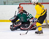 Shamrocks vs NH Avalanche 10-13-13-271_nrps