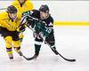 Shamrocks vs NH Avalanche 10-13-13-245_nrps