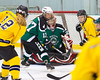 Shamrocks vs NH Avalanche 10-13-13-240_nrps
