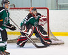 Shamrocks vs NH Avalanche 10-13-13-249_nrps