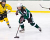 Shamrocks vs NH Avalanche 10-13-13-236_nrps