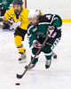 Shamrocks vs NH Avalanche 10-13-13-238_nrps