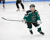 Shamrocks vs Vipers 10-27-13-008_nrps