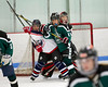 Shamrocks vs Vipers 10-27-13-040_nrps