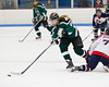 Shamrocks vs Vipers 10-27-13-091_nrps
