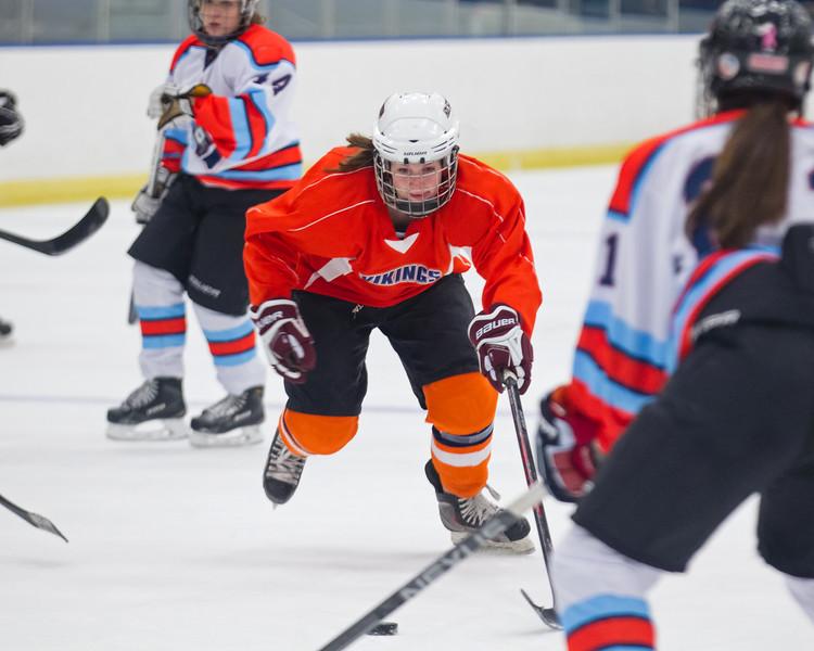Islanders 11-04-14-002_nrps