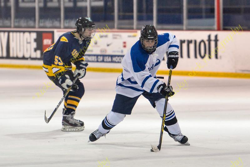 Duchesne Hockey game 01/08/16